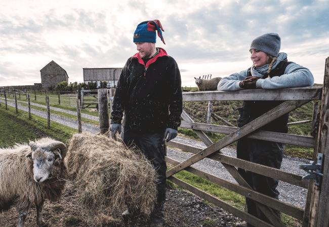 nev-kate-and-sheep