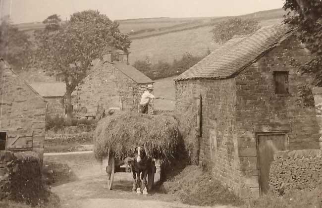 memories-of-a-moorland-farmer