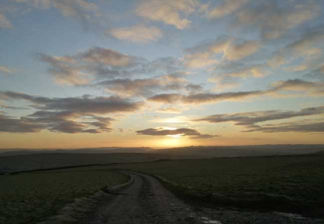 sunset-at-highfields-farm